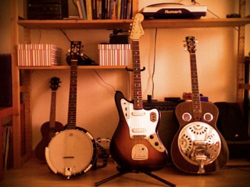 banjo, dobro, jaguar