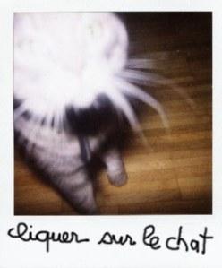 cliquer sur le chat Berlioz